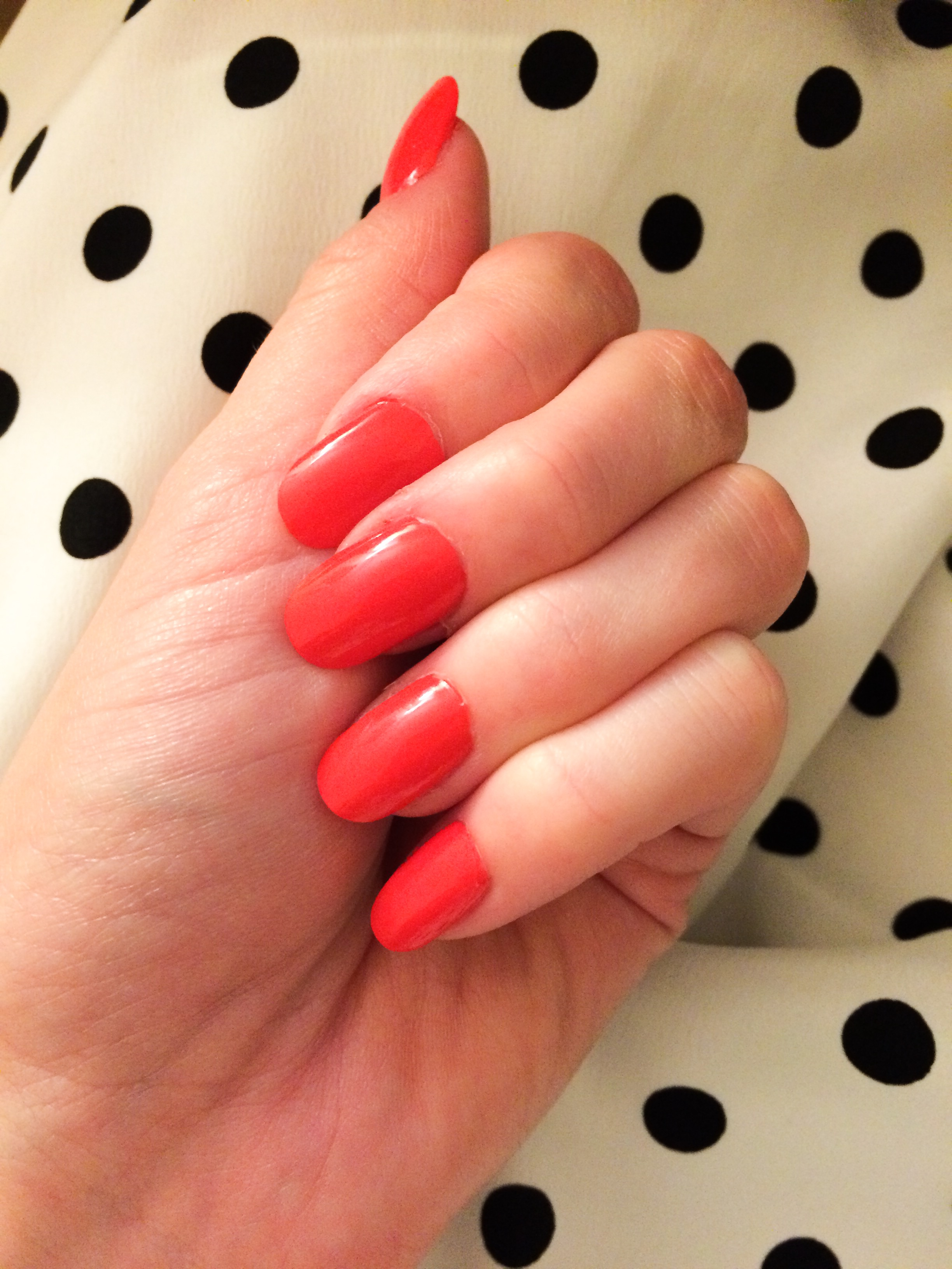 The Case For Fake Nails – TAYLOR DOROTHY